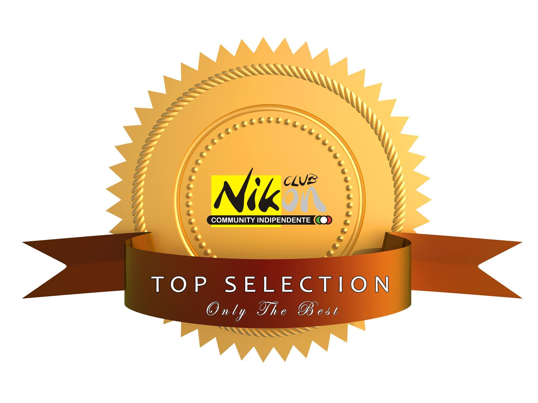 the-best-selection-nikon.jpg